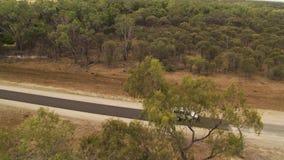 Ett skott av träd och en bil på en lång väg stock video