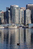 Ett skott från Stanley Park i Vancouver, Kanada som across visar de kommersiella byggnaderna Fotografering för Bildbyråer