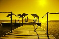 ett slags solskydd Fotografering för Bildbyråer