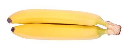 Ett slut upp av ett par av gula bananer Söta bananer som isoleras på en vit bakgrund Tropiska frukter mycket av healthful vitamin royaltyfri foto