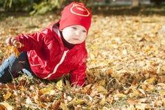 Ett småbarn i ett rött omslag sitter på stupade höstsidor Royaltyfri Fotografi