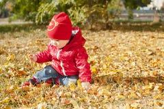 Ett småbarn i ett rött omslag sitter på stupade höstsidor Fotografering för Bildbyråer
