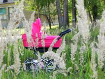 Ett sm?barn i en pram H?rlig sittvagn p? bakgrunden av naturen Detaljer och n?rbild arkivfoton