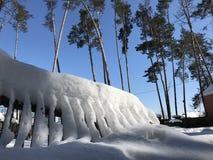 Ett snöig staket i vintersolen i Kyiv - UKRAINA - EUROPA Royaltyfri Fotografi