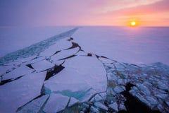 Ett spår från isbrytaren mot bakgrunden av den arktiska rosa solnedgången Expedition till nordpolen Arkivbild