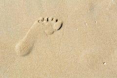 Ett spår på sanden Royaltyfri Fotografi