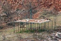 Ett ställe var örnar och ravens äter svin Äta ställe för fåglar royaltyfri bild