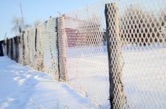 Ett staket av ingreppet som förtjänar som täckas med frost i en solig dag Fotografering för Bildbyråer