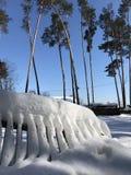 Ett staket för snöig vit i vintersolen i Kyiv - UKRAINA - EUROPA - VINTER Arkivfoto