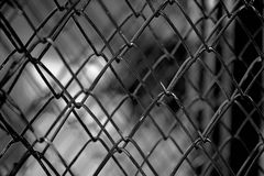 Ett staket som göras av tråd arkivbilder
