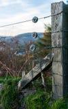 Ett staket som stoppar fåren royaltyfri fotografi