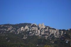 Ett stenberg Arkivbild