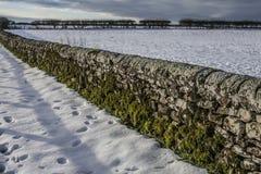 Ett stenstaket, Yorkshire, solig dag royaltyfri bild