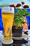 Ett stort exponeringsglas av kallt öl arkivfoton