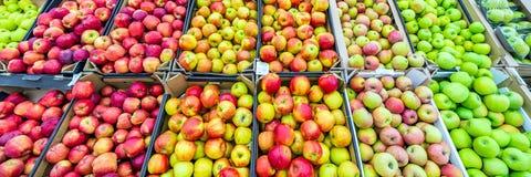 Ett stort och omväxlande val av vita äpplen som ligger i askar på livsmedelsbutiken royaltyfria foton