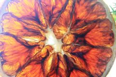 Ett stycke av den torra apelsinen på Xmas-trädet fotografering för bildbyråer