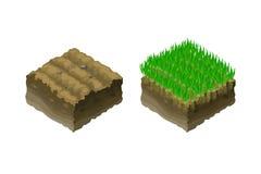 Ett stycke av land, isometrisk projektion, avsnitt av jord med grönt barn gräs plantor stock illustrationer