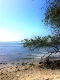 Ett stycke av min ö Arkivbilder