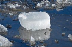 Ett stycke av is på floden Arkivfoto
