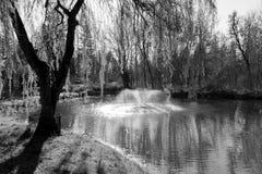 Landskap avbildar av damm Fotografering för Bildbyråer