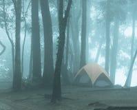 Ett tält i den dimmiga skogen Arkivfoto