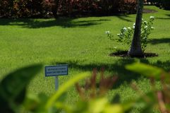 Ett tecken som säger uppehället av gräset arkivfoto