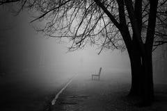 Ett träd i dimma Arkivfoto