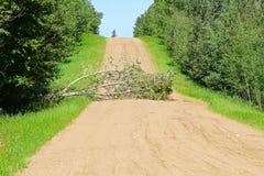 Ett träd i mitt av vägen orsaka en blockering arkivfoton