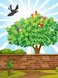 Ett träd med en flock av fåglar royaltyfri illustrationer