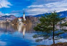 Ett träd och en kyrka på den blödde sjön royaltyfria bilder