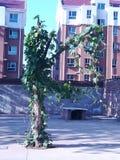 Ett träd som så är härligt som en älva Arkivbild