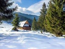 Ett trähus i Tatra berg, Polen royaltyfria bilder