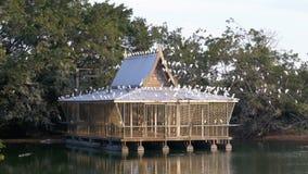 Ett trähus på en sjö som seagulls och asiatiska fåglar sitter på thailand askfat arkivfilmer