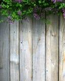 Ett trästaket och purpurfärgade lilor Royaltyfria Foton