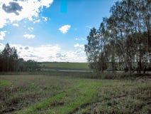 Ett tråkigt lantligt landskap med ett fält, träd och en väg på en ljus solig dag fotografering för bildbyråer