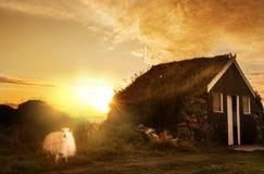 Ett traditionellt gammalt hus med ett tak som ?r bevuxet med gr?s och ett t?lt p? stranden iceland arkivbild
