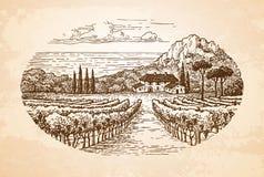 Ett trevligt går till och med winegård vid havet royaltyfri illustrationer