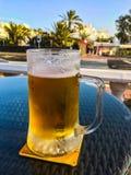 Ett trevligt kallt öl arkivbild