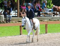 Ett ungt barn rider en häst i showen för den Germantown välgörenhethästen Arkivbilder