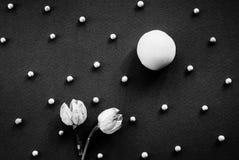 Ett uppdiktat landskap av en godis, torkade blommor och en vit peppar royaltyfria foton
