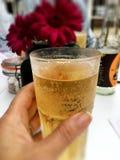 Ett uppfriskande exponeringsglas av äppeljuice Royaltyfria Foton