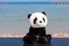 Ett välfyllt leksaksammanträde för gullig panda på en trätabell på stranden med det blåa havet i bakgrunds- och kopieringsutrymme royaltyfri foto