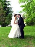 Ett vårbröllop Royaltyfri Bild