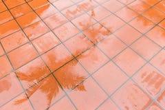 Ett vått golv på en regnig dag Arkivbild