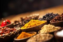 Ett val av kryddor arkivbild