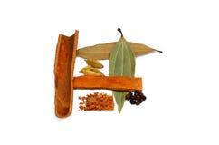 Ett val av ordnade naturliga kryddor Royaltyfri Fotografi