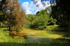 Ett vattendamm i övergiven parkerar royaltyfri fotografi