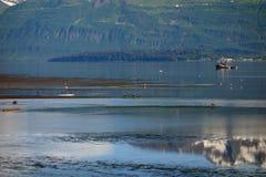 Ett vaxande tidvatten på Valdez Arkivbild