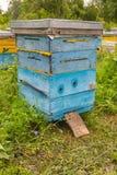 Ett vertikalt plan av en bikupa arkivfoto