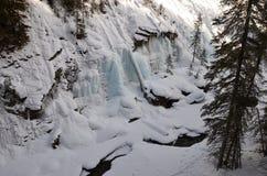 Ett vinterabstrakt begrepp Arkivfoto